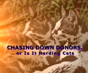Chasing Down Donors, or Is It Herding Cats