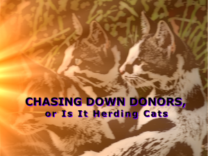 "Three cats looking toward a lightsource with the title ""Chasing Down Donors, or Is It Herding Cat"""