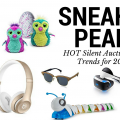 SNEAK PEEK! Hot Silent Auction Trends for 2017